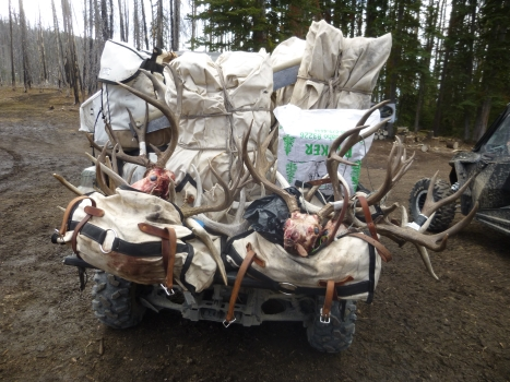 2019 Elk and Mule Deer Hunts