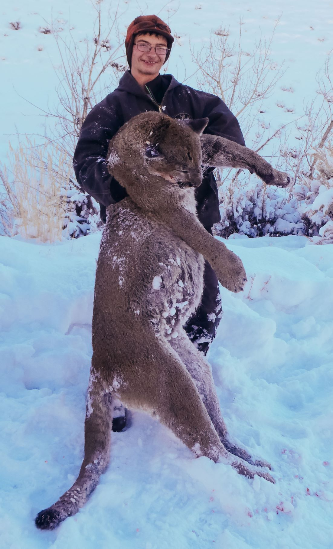2021 Idaho Mountain Lion