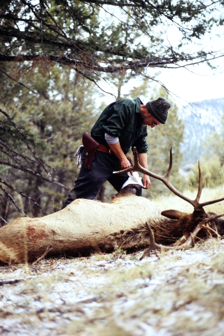 Cavanaugh skinning elk in Idaho